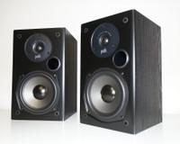 T15 pair4.jpg