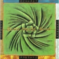 Dave Weckl Band: Synergy (1999)