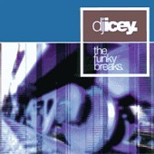 DJ Icey: The Funky Breaks